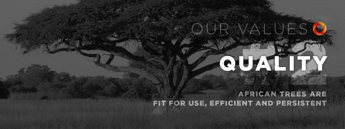 MobileData Values #2: Quality