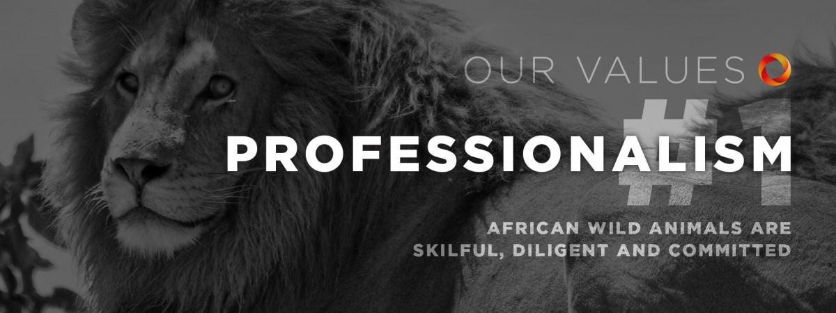 MobileData Values #1: Professionalism